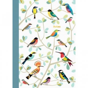 Cahier oiseaux - Cartes d'art