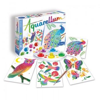Aquarellum Junior dans le...