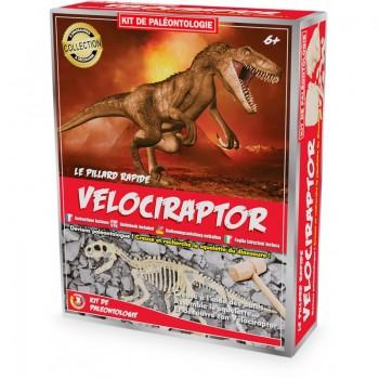 Kit paléo vélociraptor -...