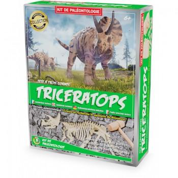 Kit paléo triceratops - Ulysse